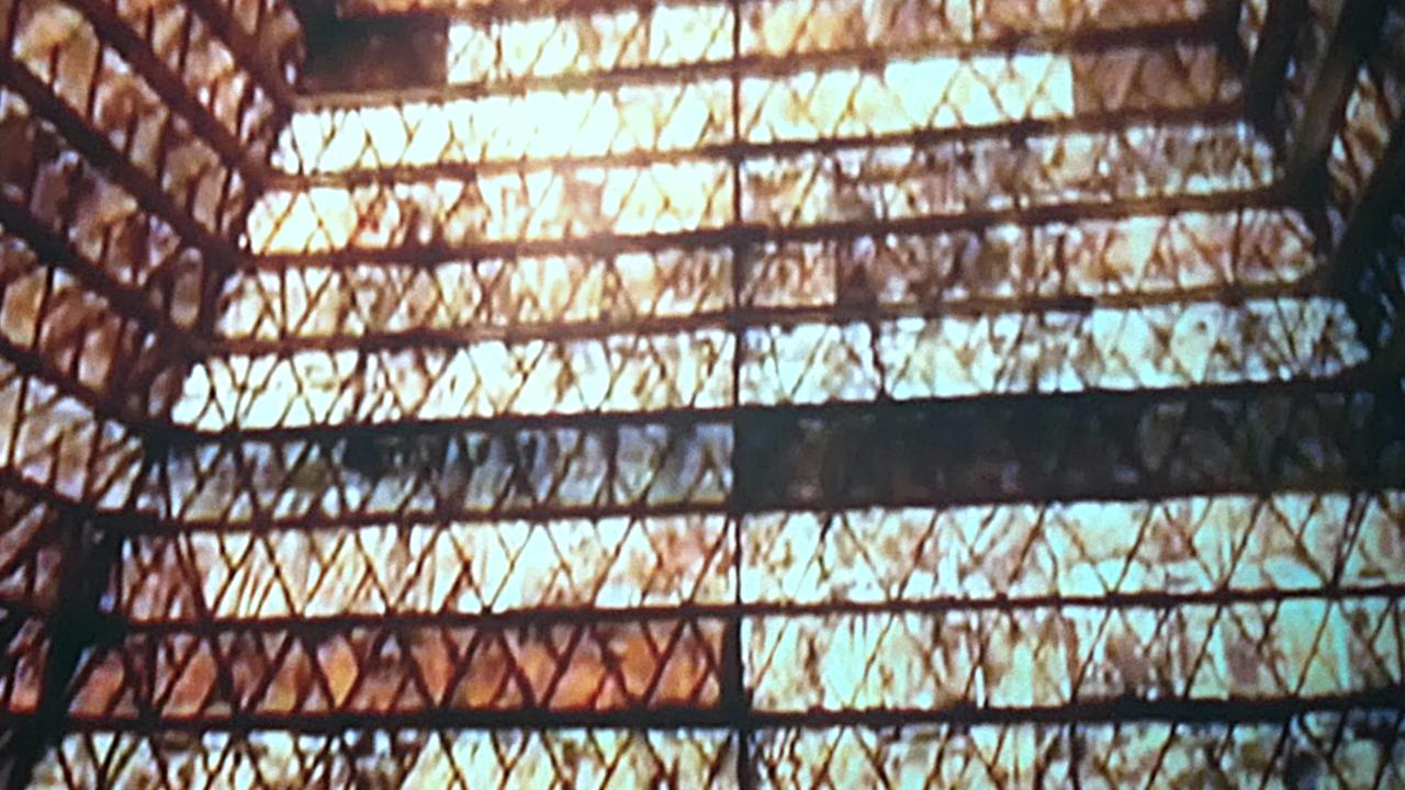 Stargate Pyramids